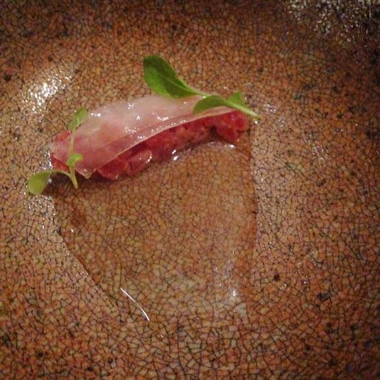 Yellowfin tuna, Acadia
