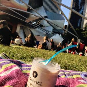 Talenti cinnamon peach biscuit gelato, free in Millennium Park
